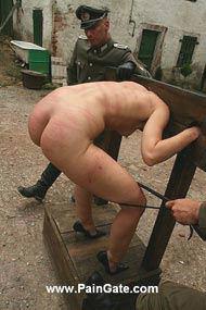 paingate tortured tits