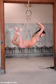 slave bondage cartoon